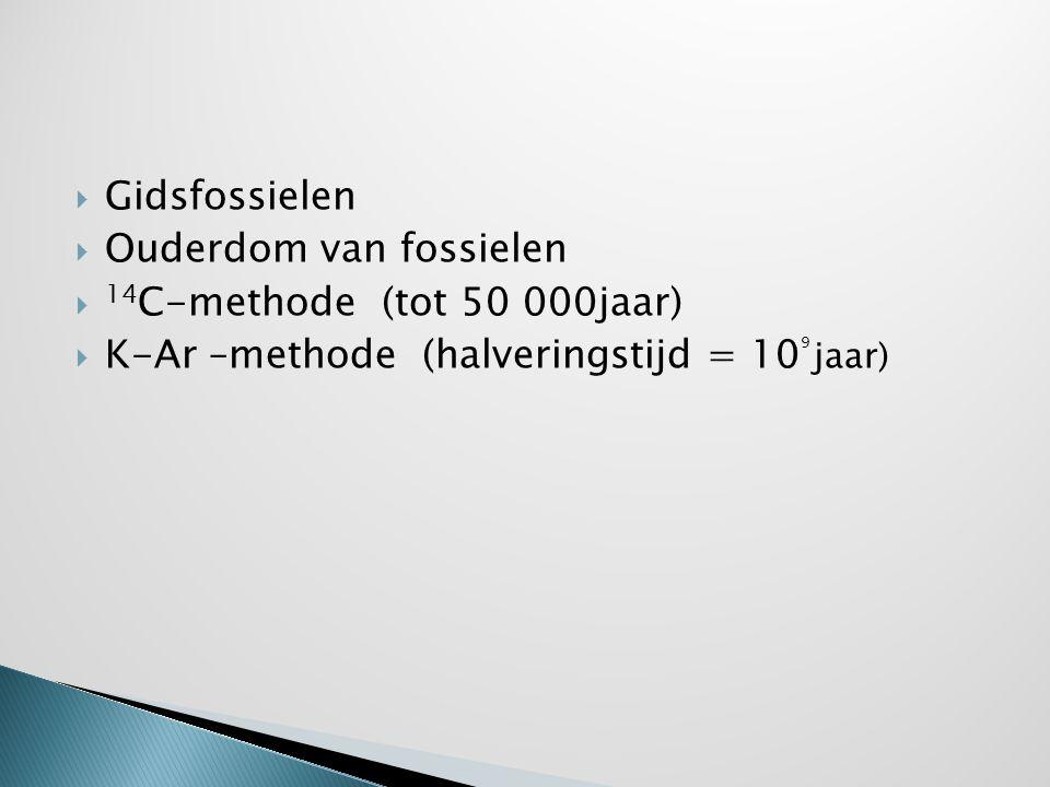 Gidsfossielen Ouderdom van fossielen.