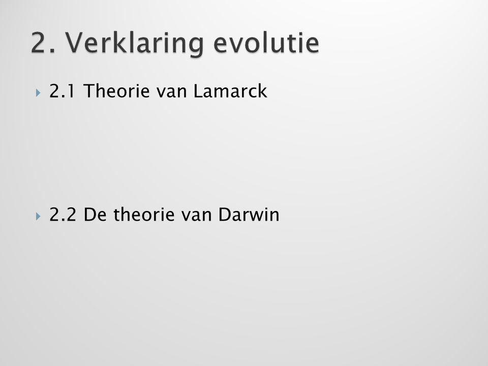 2. Verklaring evolutie 2.1 Theorie van Lamarck