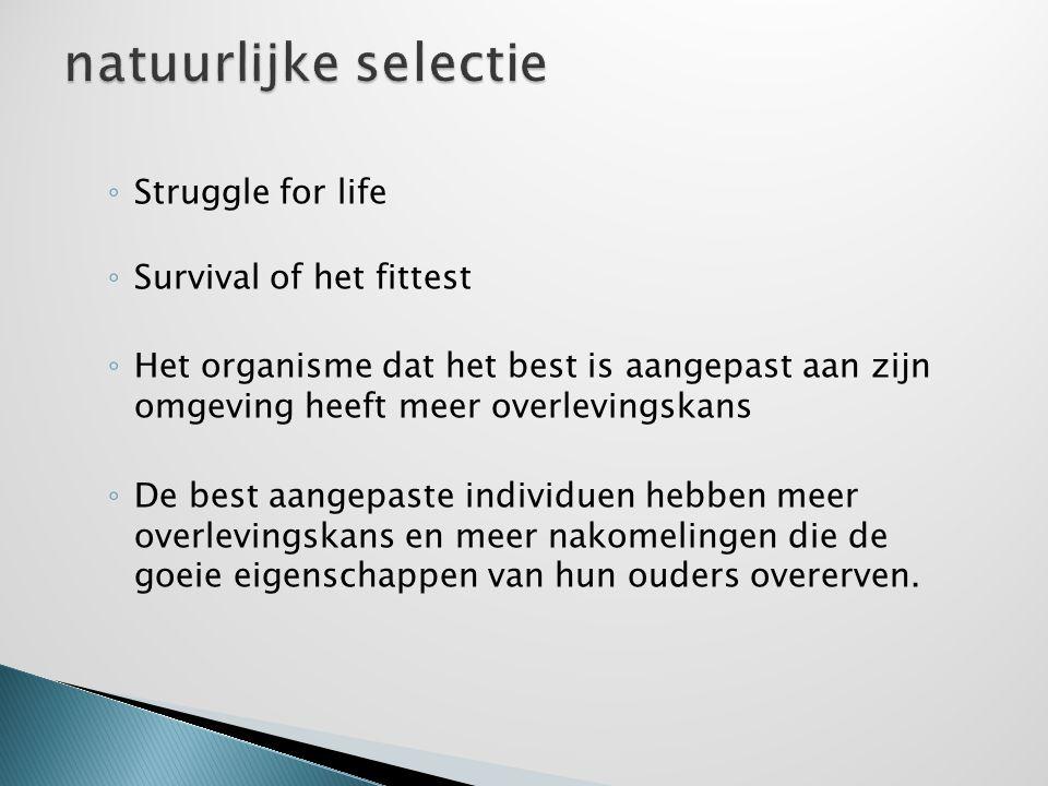 natuurlijke selectie Struggle for life Survival of het fittest