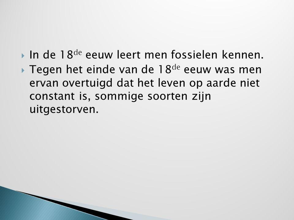 In de 18de eeuw leert men fossielen kennen.