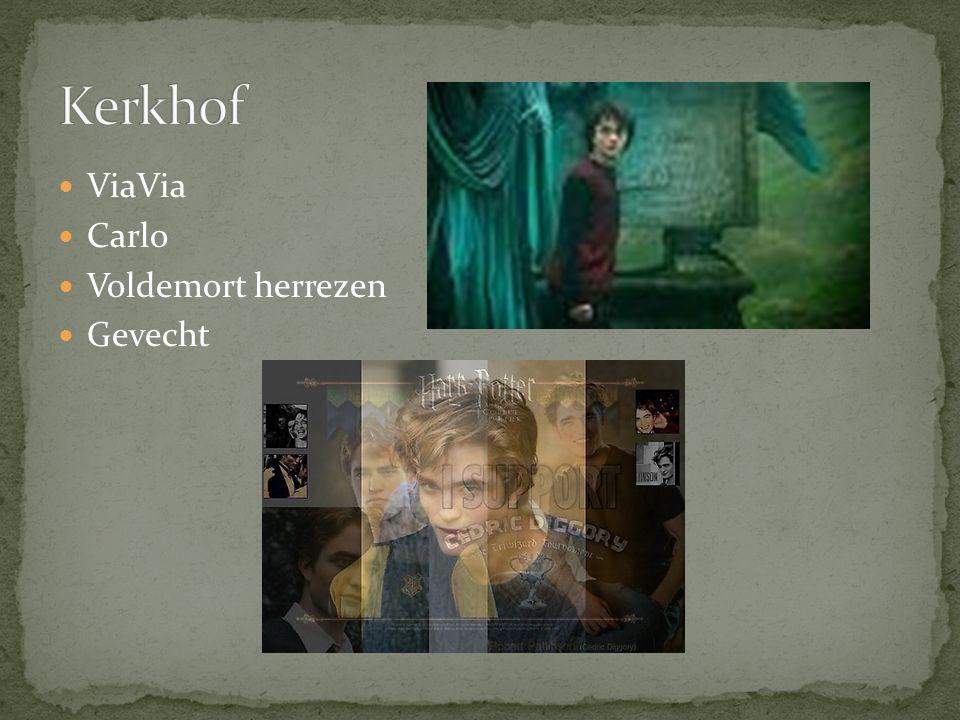 Kerkhof ViaVia Carlo Voldemort herrezen Gevecht
