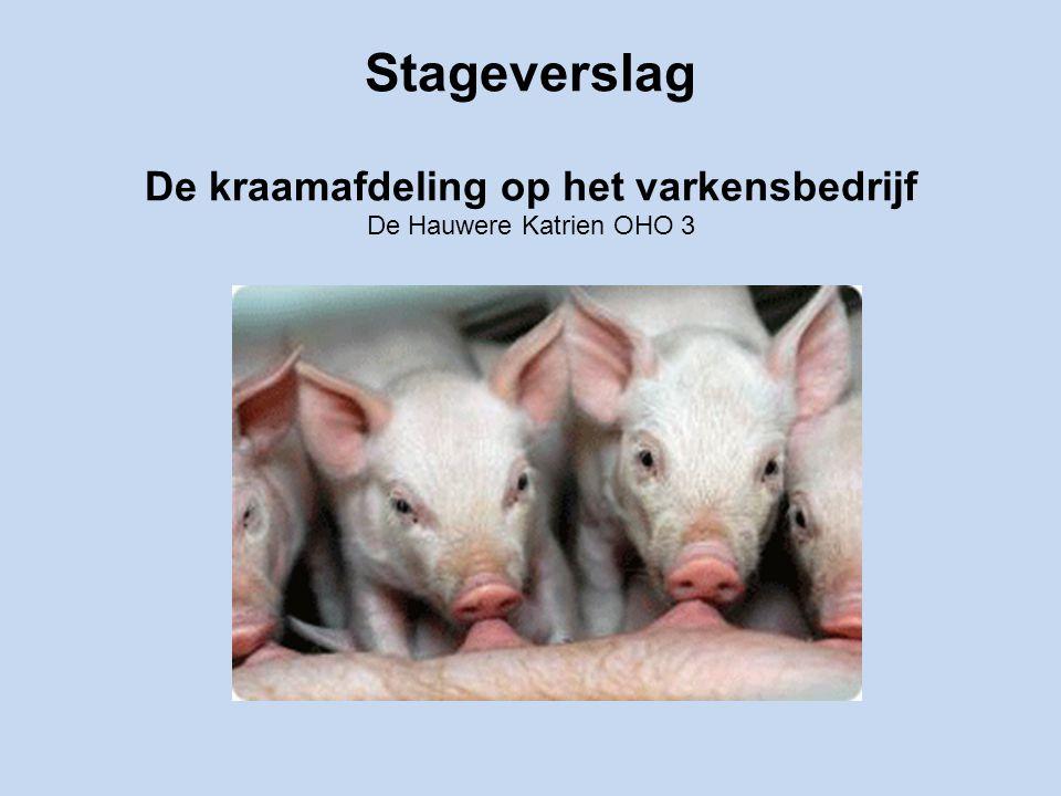 Stageverslag De kraamafdeling op het varkensbedrijf De Hauwere Katrien OHO 3