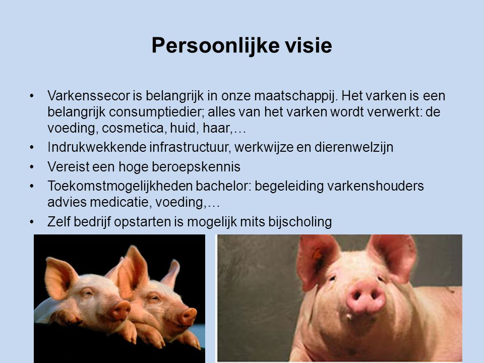 Persoonlijke visie