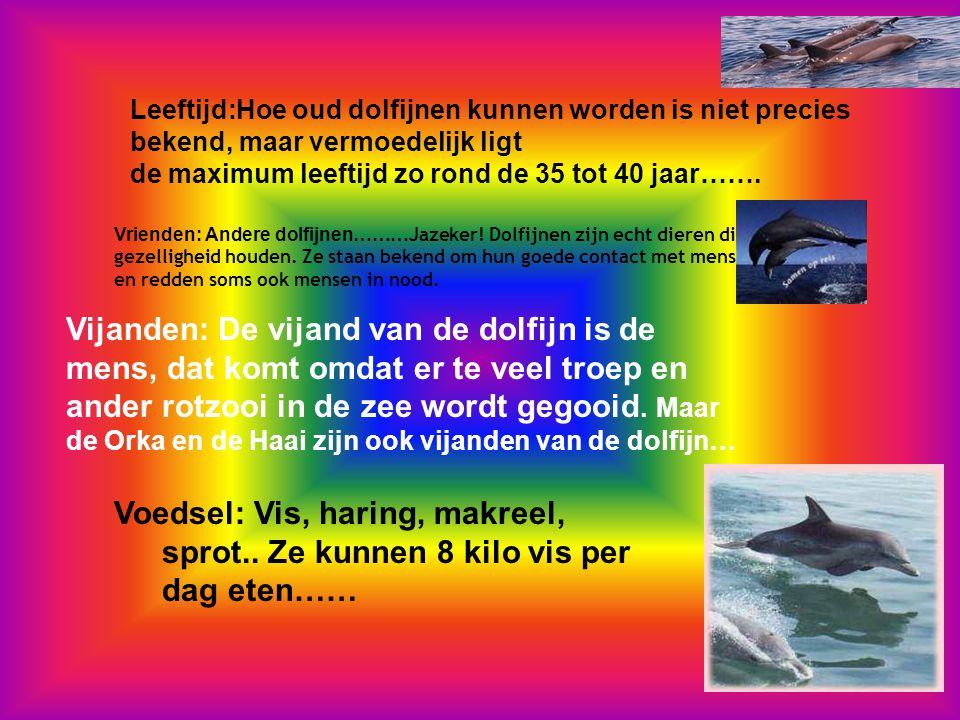 Leeftijd:Hoe oud dolfijnen kunnen worden is niet precies bekend, maar vermoedelijk ligt de maximum leeftijd zo rond de 35 tot 40 jaar…….