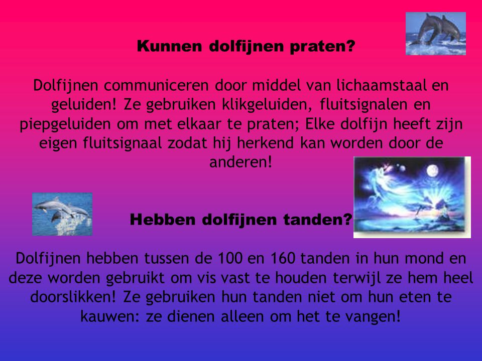 Kunnen dolfijnen praten