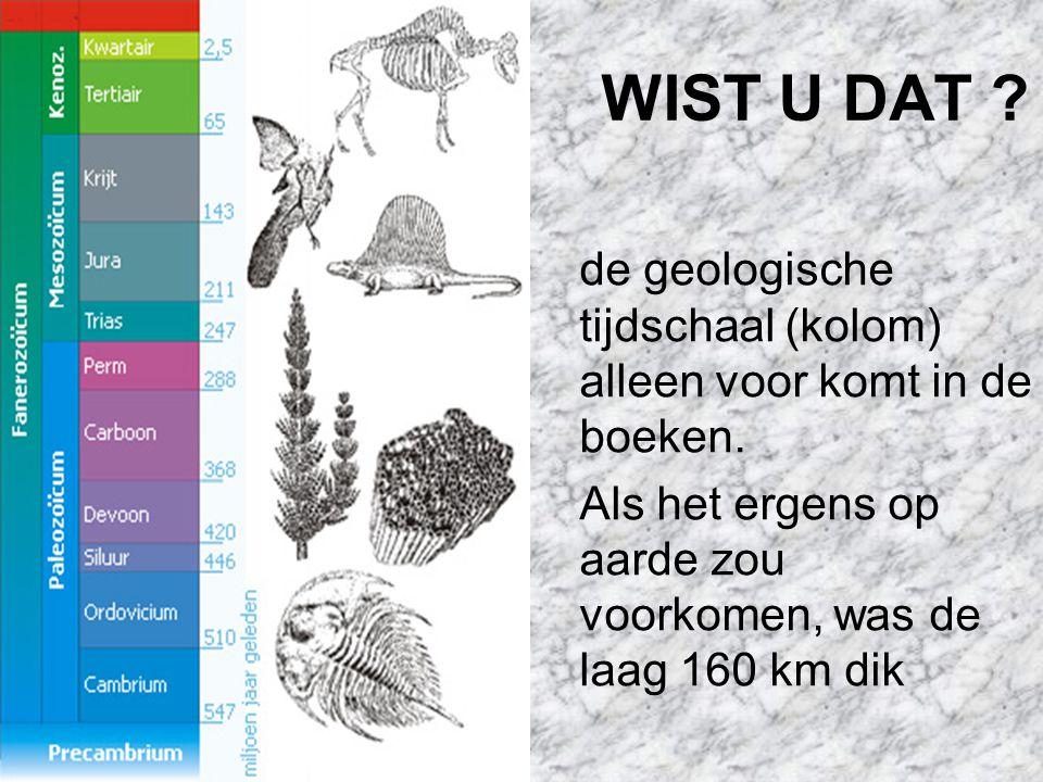 WIST U DAT . de geologische tijdschaal (kolom) alleen voor komt in de boeken.