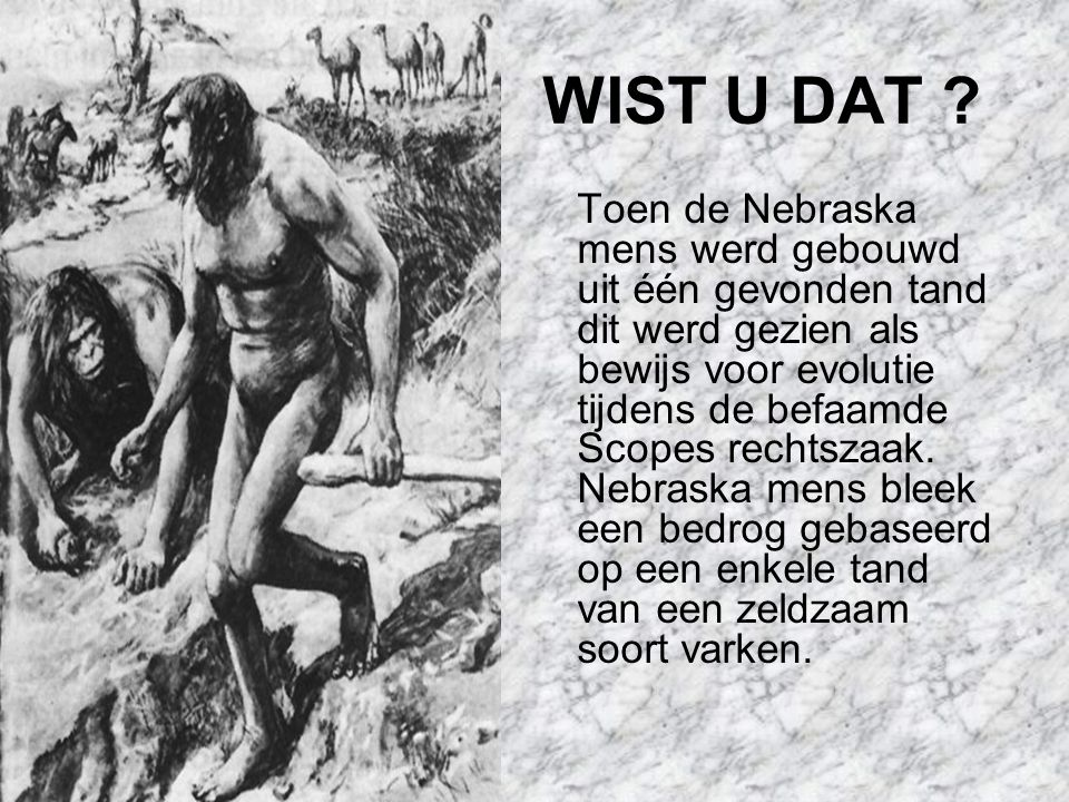 WIST U DAT