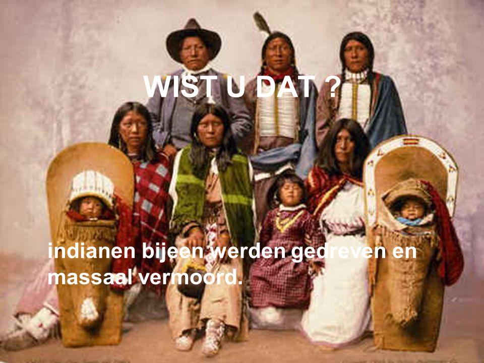 WIST U DAT indianen bijeen werden gedreven en massaal vermoord.
