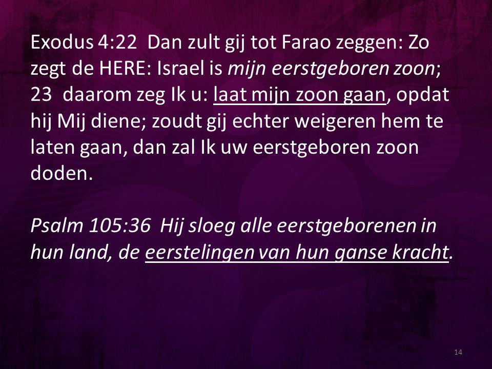 Exodus 4:22 Dan zult gij tot Farao zeggen: Zo zegt de HERE: Israel is mijn eerstgeboren zoon; 23 daarom zeg Ik u: laat mijn zoon gaan, opdat hij Mij diene; zoudt gij echter weigeren hem te laten gaan, dan zal Ik uw eerstgeboren zoon doden.