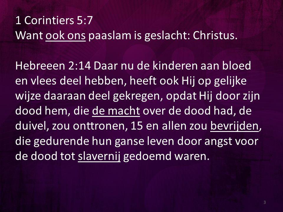 1 Corintiers 5:7 Want ook ons paaslam is geslacht: Christus.