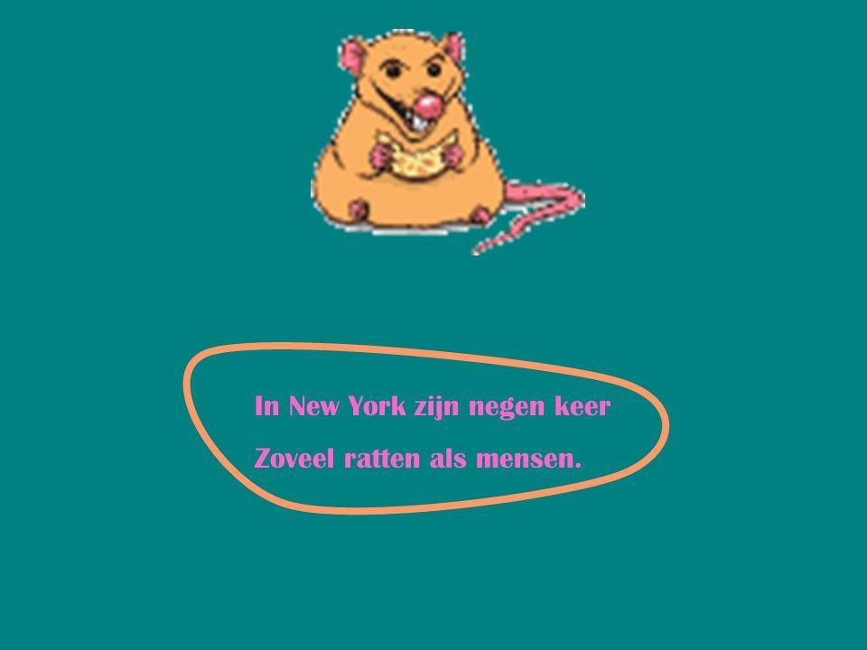 In New York zijn negen keer