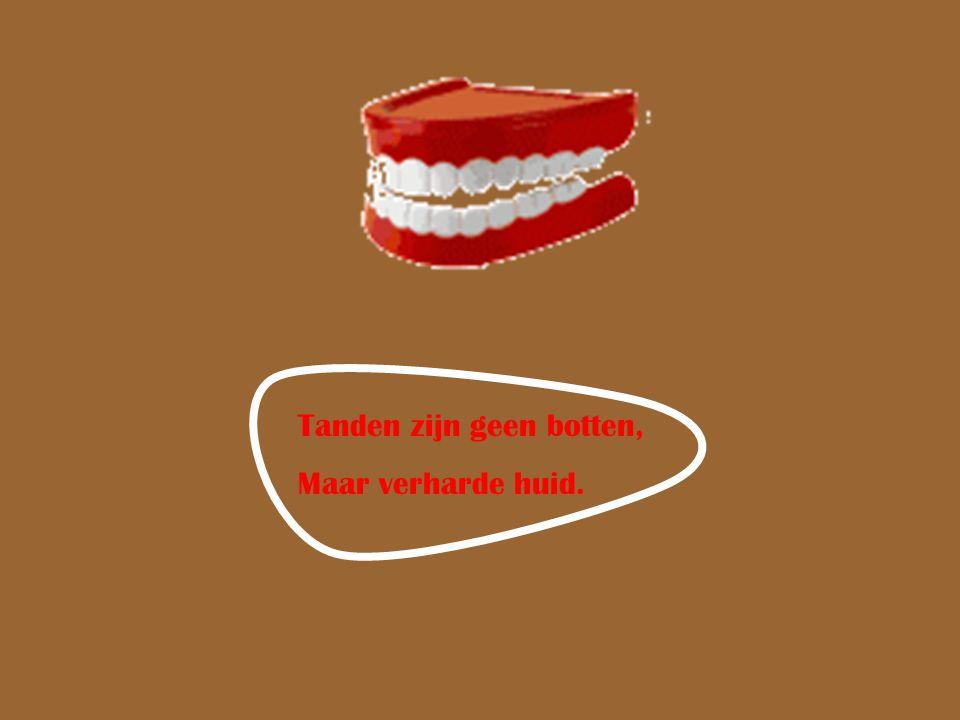 Tanden zijn geen botten,