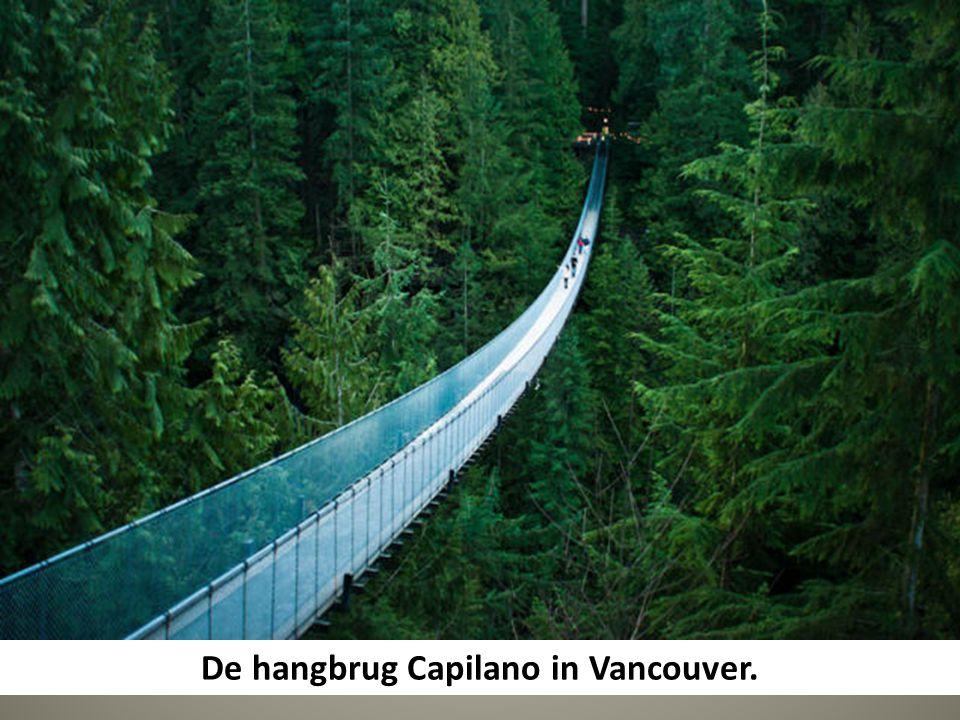 De hangbrug Capilano in Vancouver.