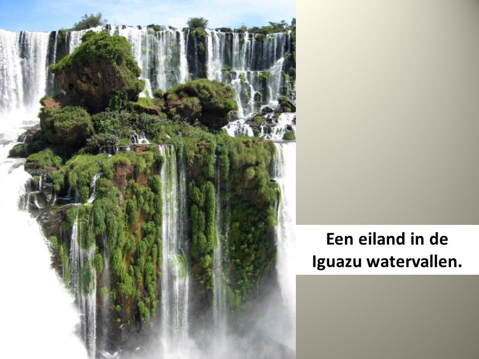 Een eiland in de Iguazu watervallen.