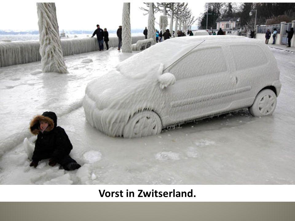 Vorst in Zwitserland.