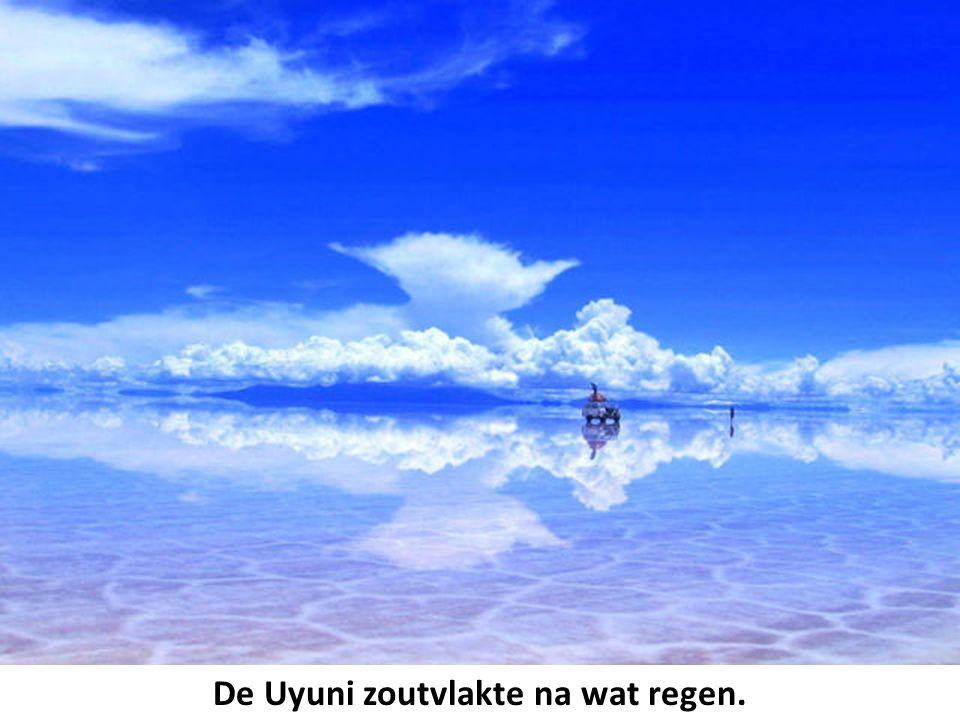 De Uyuni zoutvlakte na wat regen.