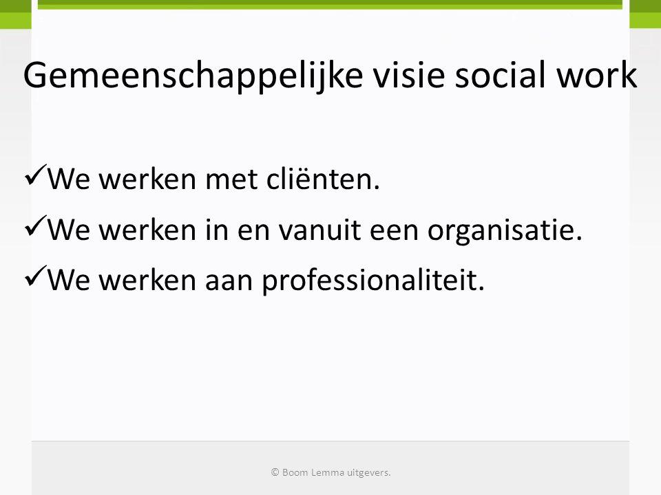 Gemeenschappelijke visie social work
