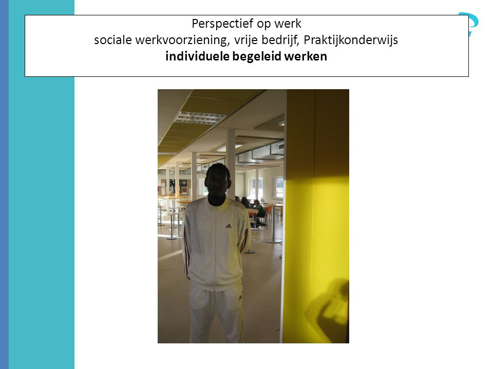 Perspectief op werk sociale werkvoorziening, vrije bedrijf, Praktijkonderwijs individuele begeleid werken