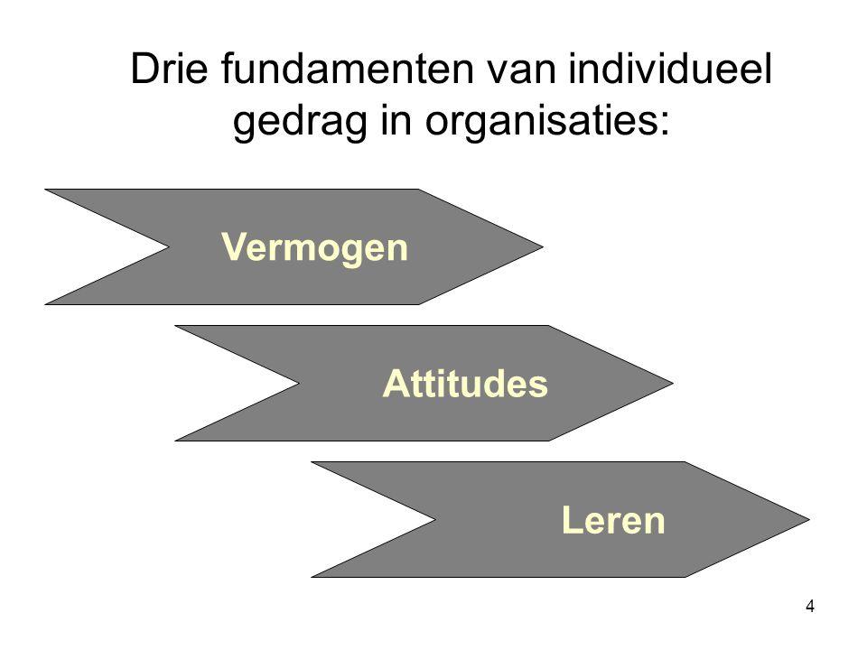 Drie fundamenten van individueel gedrag in organisaties: