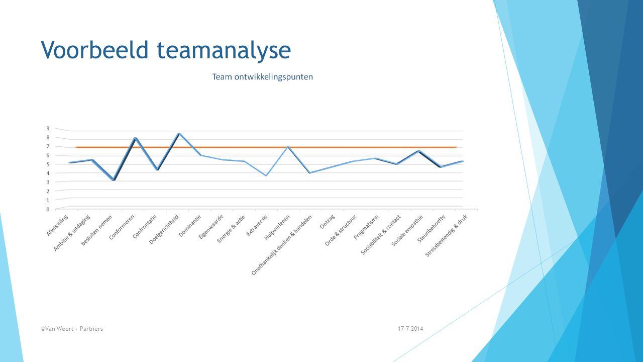 Voorbeeld teamanalyse