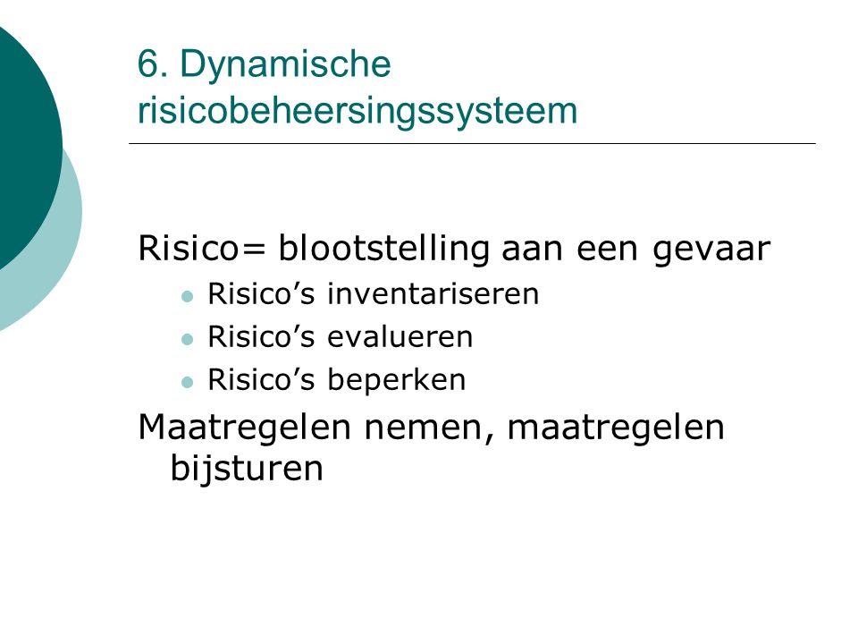 6. Dynamische risicobeheersingssysteem