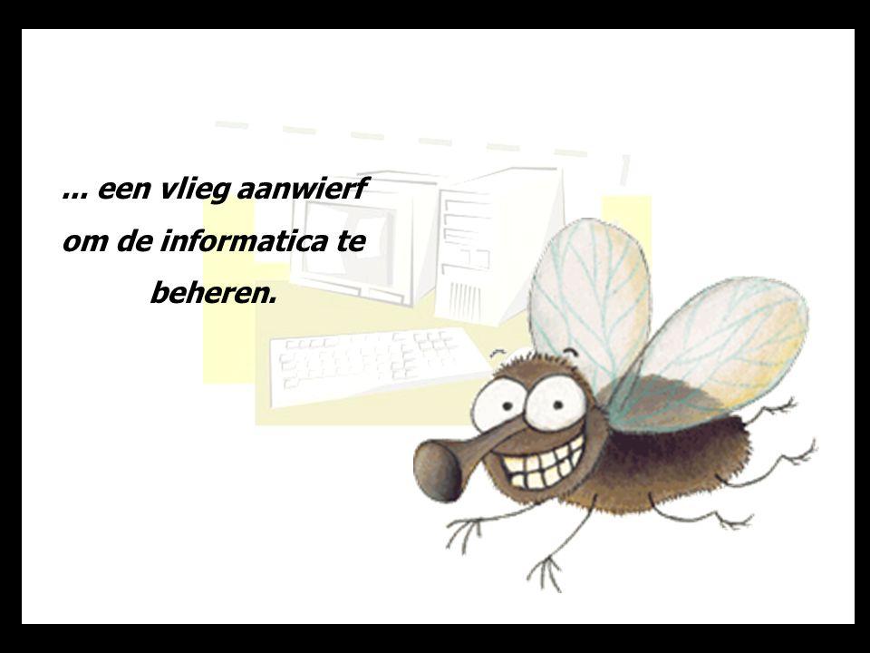 ... een vlieg aanwierf om de informatica te beheren.