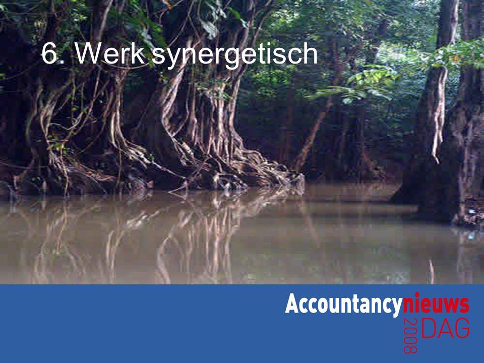 6. Werk synergetisch