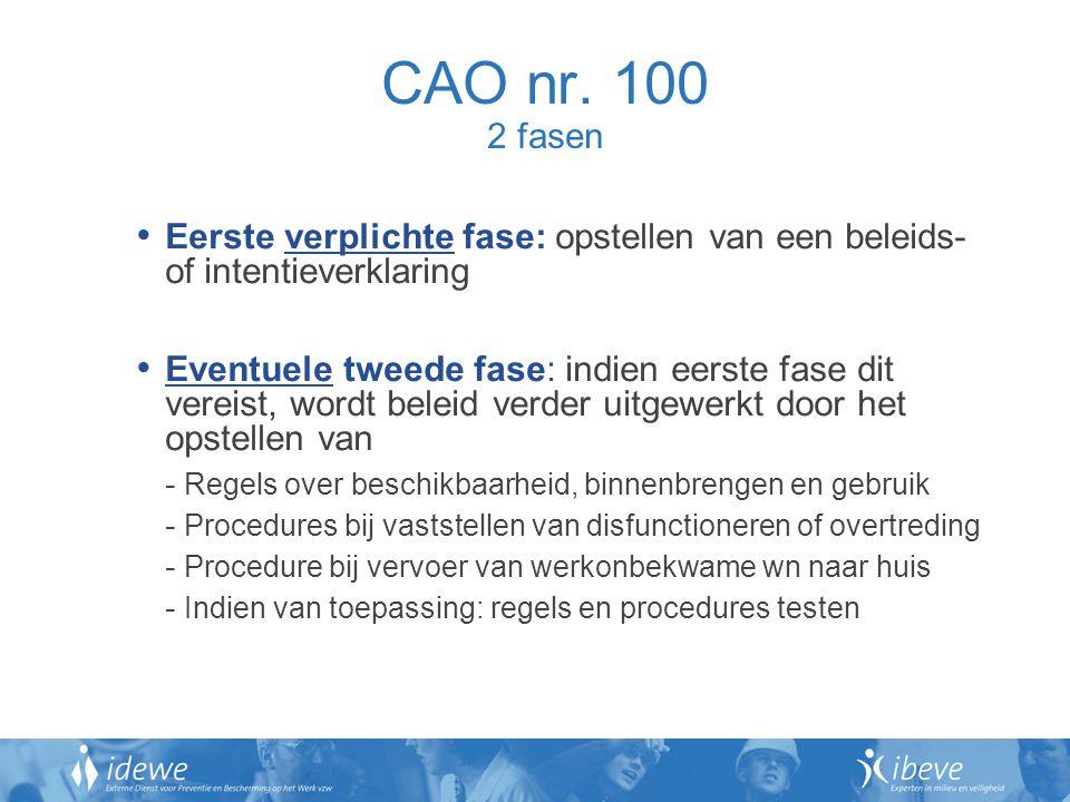 CAO nr. 100 2 fasen Eerste verplichte fase: opstellen van een beleids- of intentieverklaring.