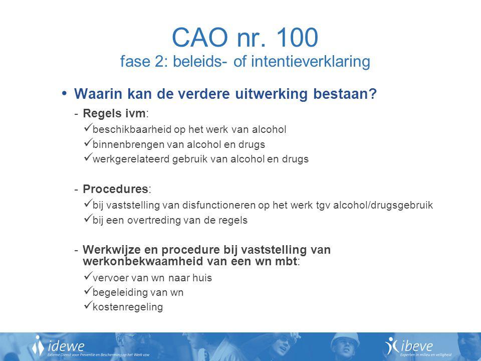 CAO nr. 100 fase 2: beleids- of intentieverklaring