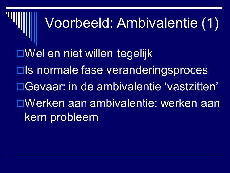 Voorbeeld: Ambivalentie (1)
