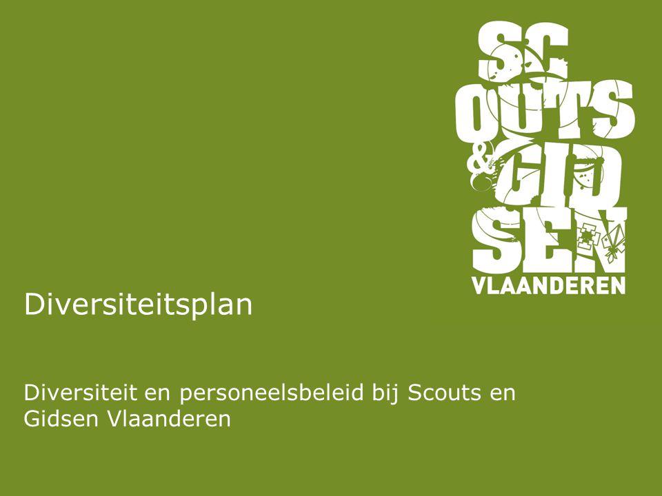 Diversiteit en personeelsbeleid bij Scouts en Gidsen Vlaanderen