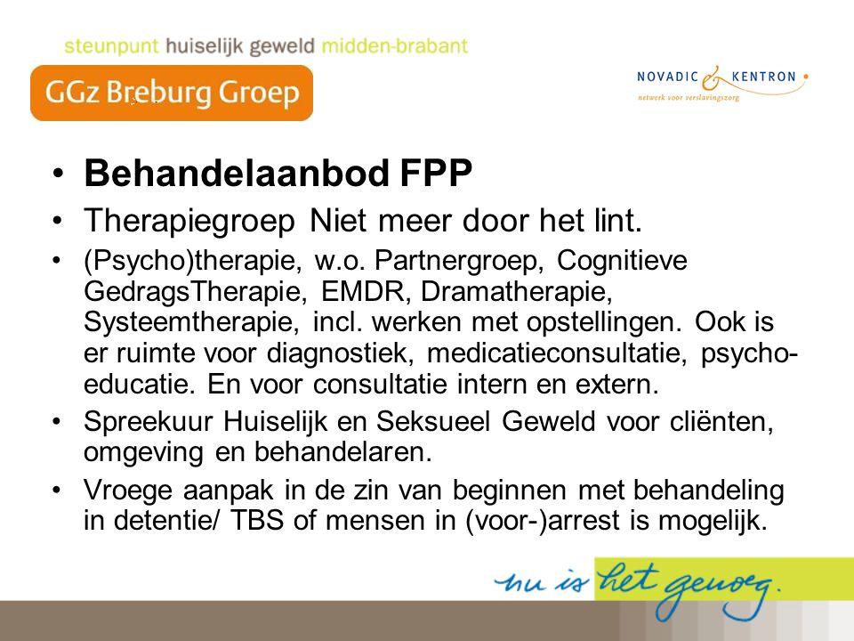 Behandelaanbod FPP Therapiegroep Niet meer door het lint.