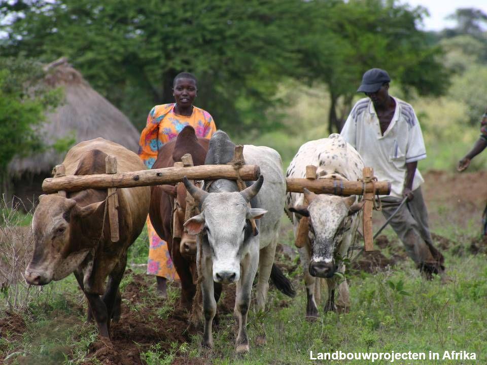 Landbouwprojecten in Afrika
