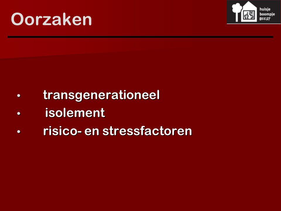 Oorzaken transgenerationeel isolement risico- en stressfactoren