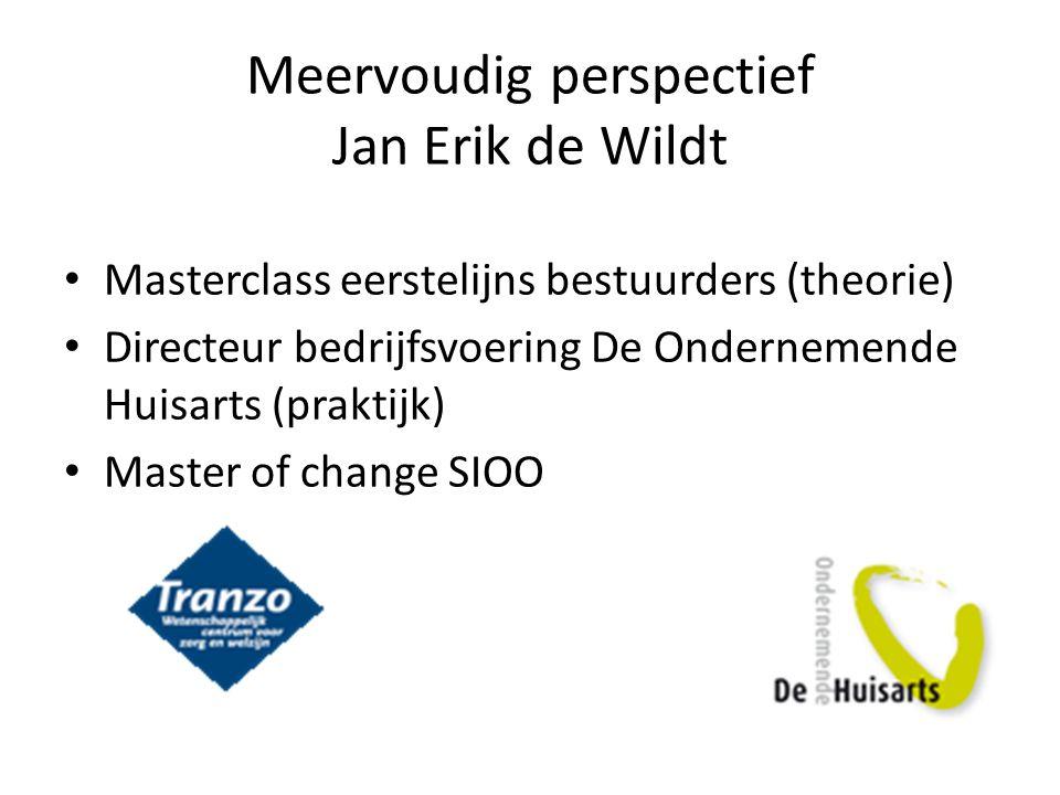 Meervoudig perspectief Jan Erik de Wildt