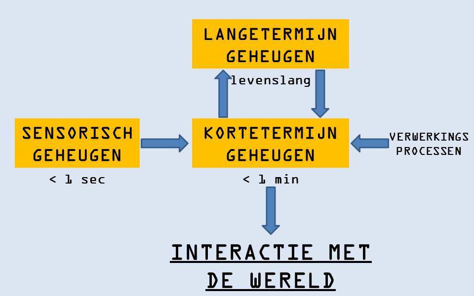 KORTETERMIJN GEHEUGEN INTERACTIE MET DE WERELD