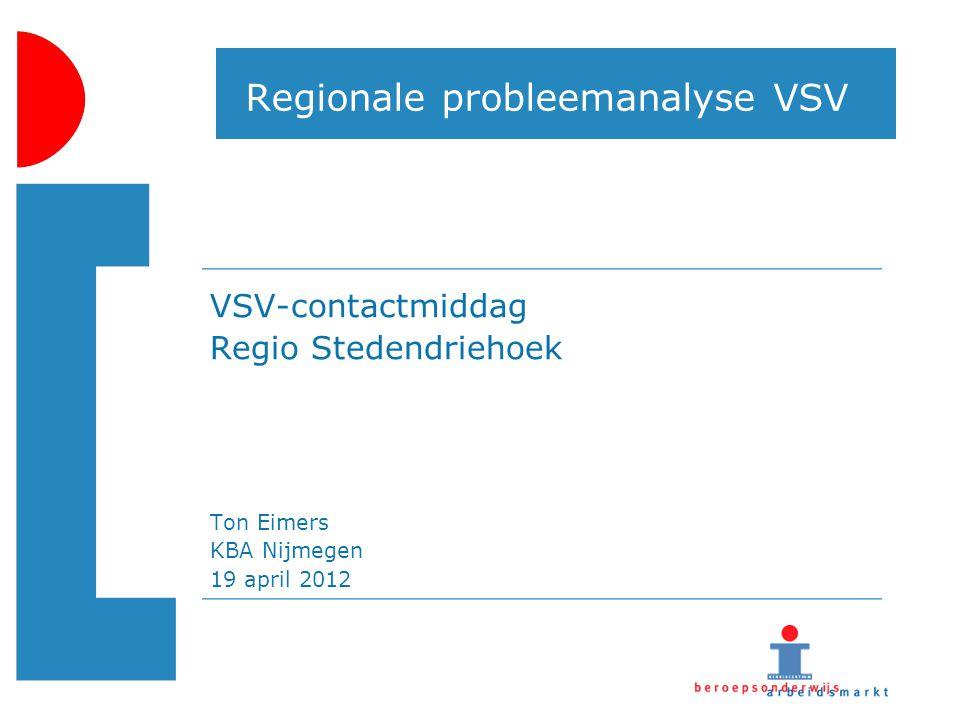 Regionale probleemanalyse VSV