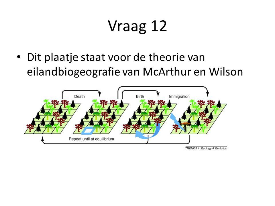 Vraag 12 Dit plaatje staat voor de theorie van eilandbiogeografie van McArthur en Wilson