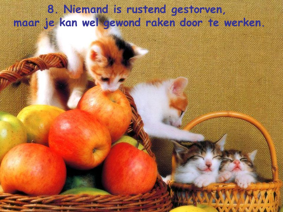 8. Niemand is rustend gestorven,
