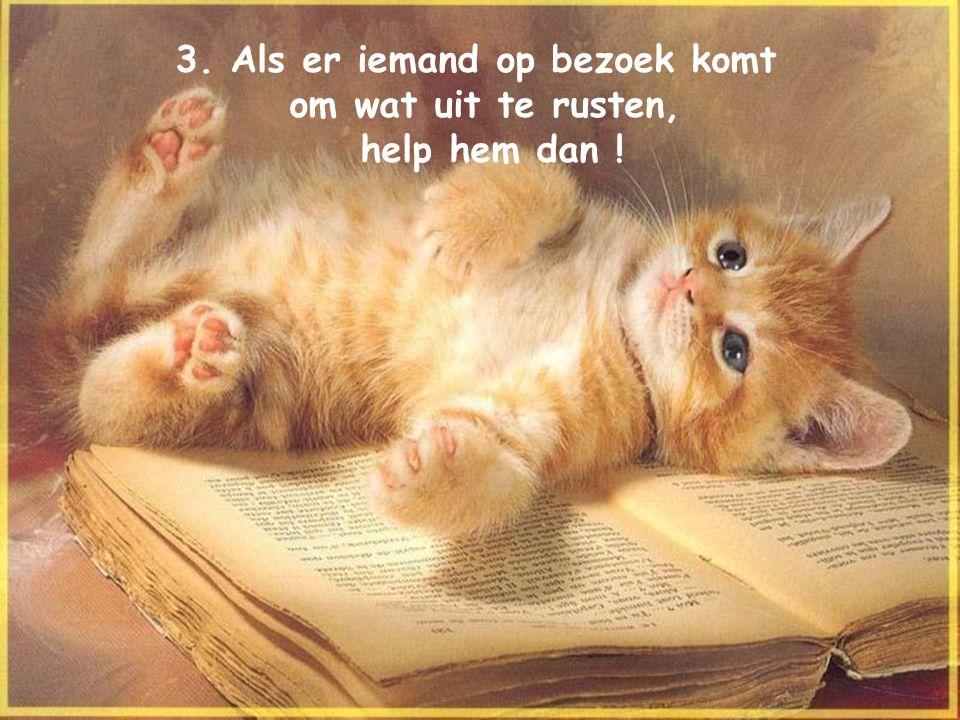 3. Als er iemand op bezoek komt om wat uit te rusten, help hem dan !