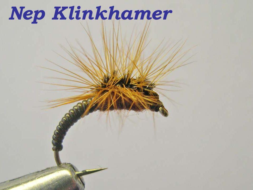 Nep Klinkhamer