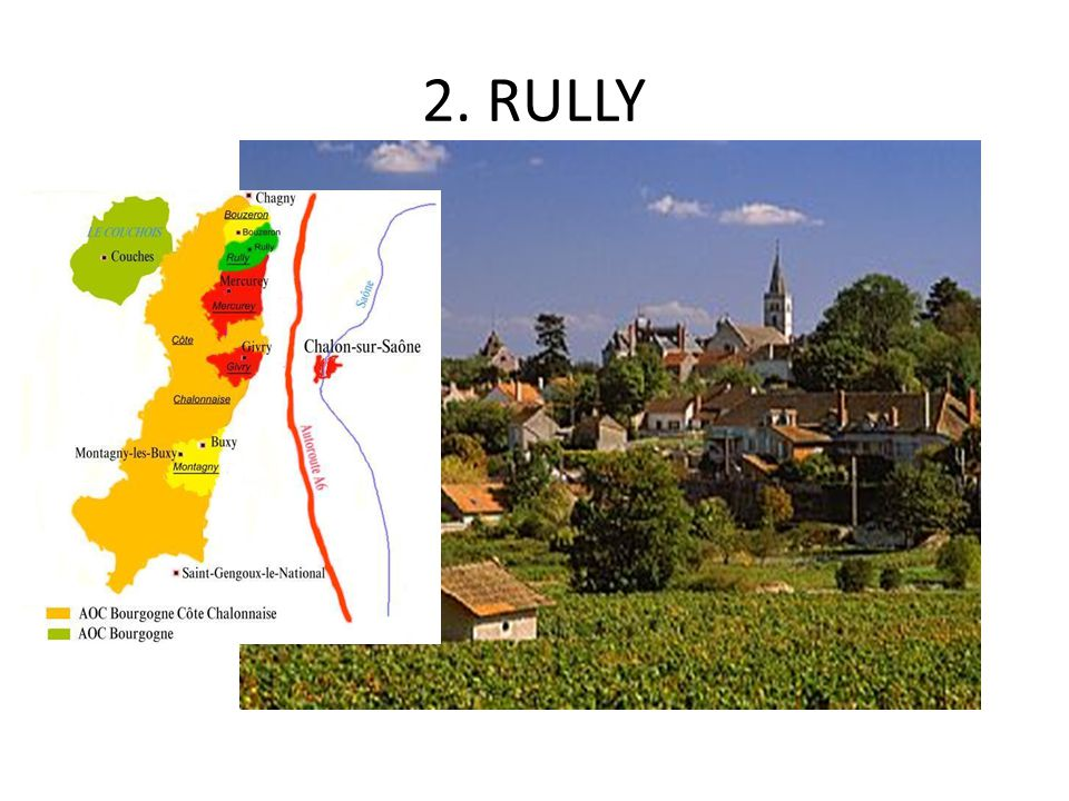 2. RULLY