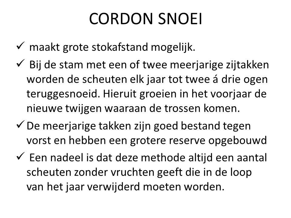 CORDON SNOEI maakt grote stokafstand mogelijk.