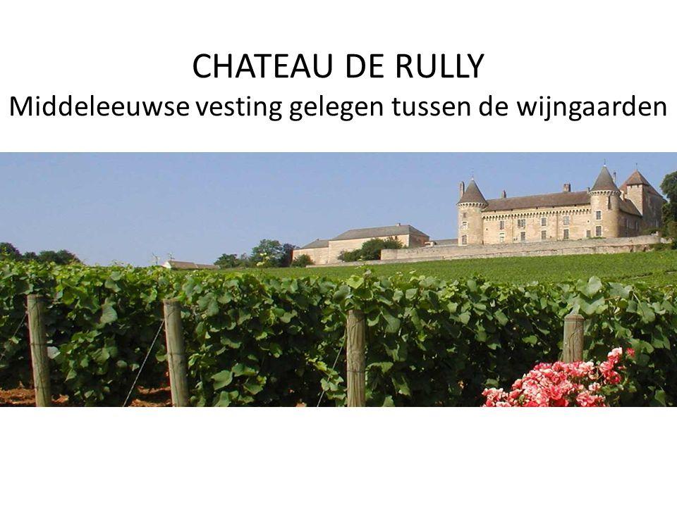 CHATEAU DE RULLY Middeleeuwse vesting gelegen tussen de wijngaarden