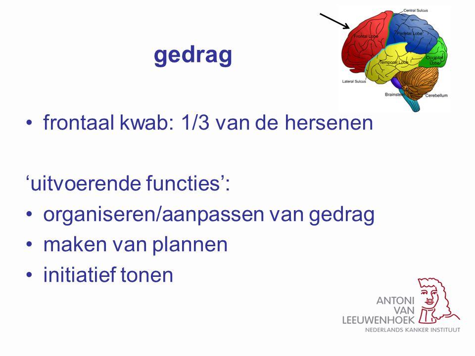gedrag frontaal kwab: 1/3 van de hersenen 'uitvoerende functies':