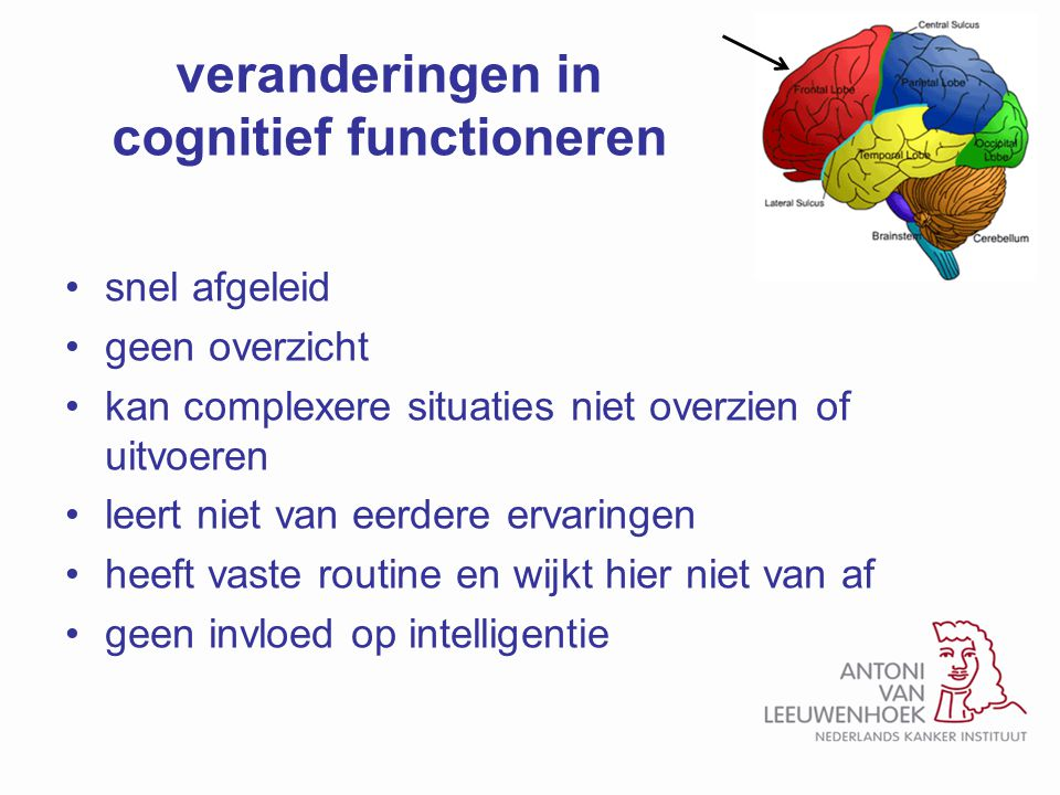 veranderingen in cognitief functioneren
