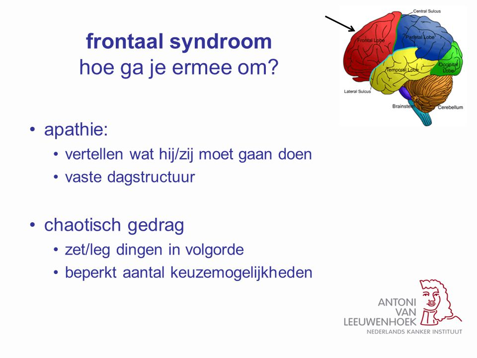 frontaal syndroom hoe ga je ermee om