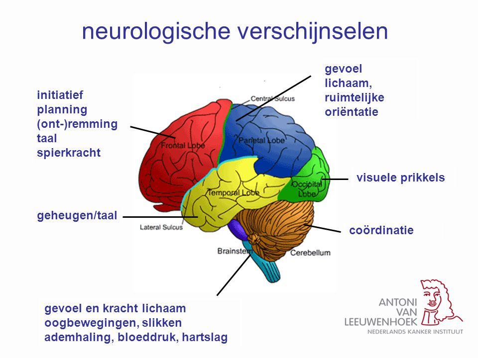 neurologische verschijnselen