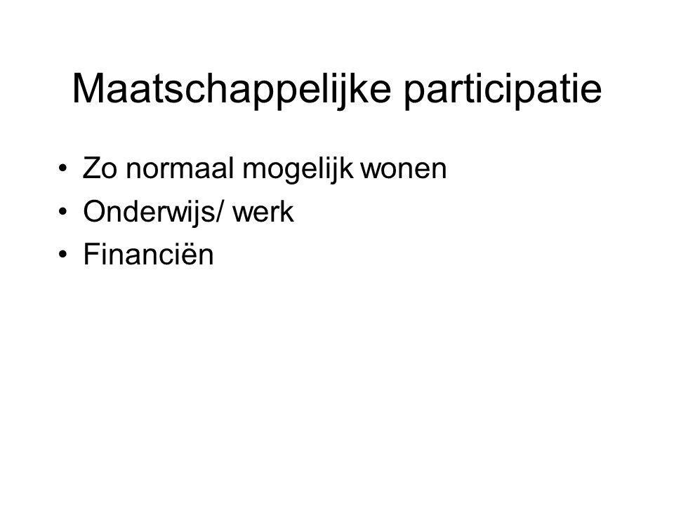 Maatschappelijke participatie