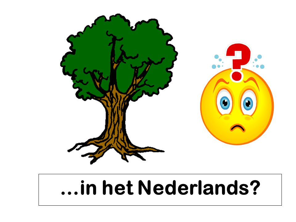 …in het Nederlands